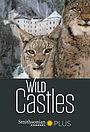 Сериал «Wild Castles» (2017)