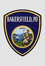 Сериал «Полиция Бейкерсфилда» (1993 – 1994)