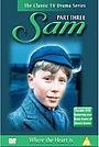 Серіал «Сэм» (1973 – 1975)