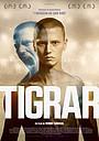 Фильм «Тигры» (2020)
