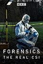 Сериал «Криминалистика: Настоящее место преступления» (2019)