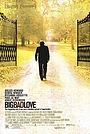 Фильм «Большая плохая любовь» (2001)