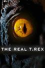 Фільм «The Real T Rex with Chris Packham» (2018)