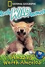 Сериал «Really Wild Animals» (1993 – 1998)