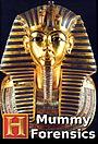Серіал «Mummy Forensics» (2008)