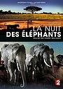 Фильм «La nuit des éléphants» (2014)