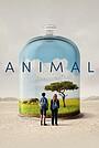 Фільм «Животное» (2021)
