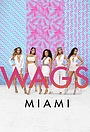 Серіал «WAGS Miami» (2016 – 2017)