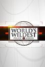 Серіал «World's Wildest Police Videos» (1998 – 2012)