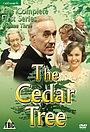 Серіал «The Cedar Tree» (1976 – 1978)