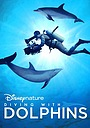 Фильм «Diving with Dolphins» (2020)