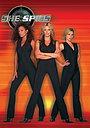 Серіал «Шпионки» (2002 – 2004)