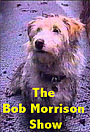 Сериал «The Bob Morrison Show» (1994)