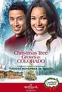 Фільм «A Christmas Tree Grows in Colorado» (2020)