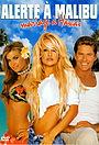 Фильм «Гавайская свадьба» (2003)