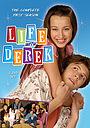 Серіал «Жизнь с Дереком» (2005 – 2009)