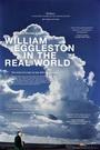 Фильм «Уильям Эгглстон в реальном мире» (2005)