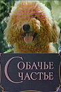 Фільм «Собачье счастье» (1991)