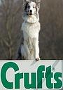 Серіал «Crufts Dog Show» (1966 – 2008)