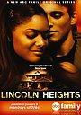 Сериал «Линкольн-хайтс» (2006 – 2009)