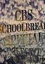 Сериал «CBS Особенные школьные каникулы» (1984 – 1996)