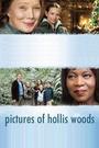 Фільм «Картинки Холлис Вудс» (2007)