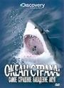 Фільм «Discovery: Океан страха. Самое страшное нападение акул» (2007)
