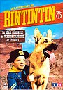 Сериал «Приключения Рин Тин Тина» (1954 – 1959)