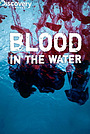 Фільм «Blood in the Water» (2009)