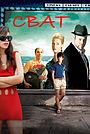 Фильм «Сват» (2010)