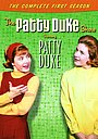 Серіал «Шоу Пэтти Дьюк» (1963 – 1966)