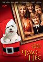 Фільм «Чудо-пес» (2011)