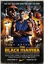 Фильм «Черная мамба» (2011)