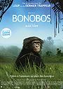 Фильм «Бонобо» (2011)