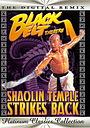 Фільм «Храм Шаолинь наносит ответный удар» (1981)