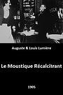 Фільм «Le Moustique Récalcitrant» (1905)
