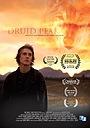 Фільм «Друид пик» (2014)