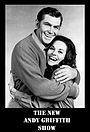 Сериал «The New Andy Griffith Show» (1971)