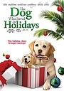 Фільм «Пёс, который спас каникулы» (2012)