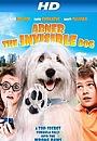 Фильм «Абнер, невидимый пёс» (2013)