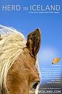 Фільм «Herd in Iceland» (2013)