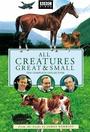 Серіал «О всех созданиях -– больших и малых» (1978 – 1990)