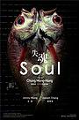 Фільм «Душа» (2013)