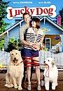 Фильм «Счастливая собака» (2015)