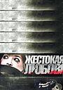Фильм «Жестокая любовь» (2010)