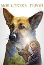 Фільм «Моя собака – герой» (2019)