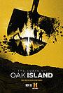 Серіал «Проклятие острова Оук» (2014 – ...)
