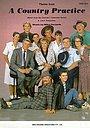 Серіал «Примитивная страна» (1981 – 1984)