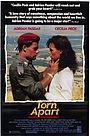 Фільм «Раздираемый на части» (1990)