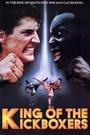 Фильм «Король кикбоксеров» (1990)